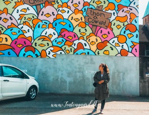 Seværdigheder i Silkeborg, Silkeborg Seværdigheder, oplevelser i silkeborg, hvad kan man lave i Silkeborg, Museer i Silkeborg, Gratis opleveser i Silkeborg, Asger Jorn, Street art byer i Danmark, Aqua Silkeborg, Tollundmanden Silkeborg