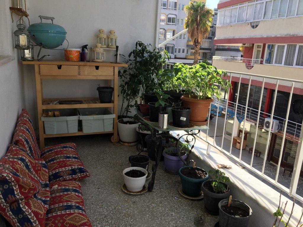 altan have, lejlighed, mit hjem, mit hjem i Alanya, planter på altanen,