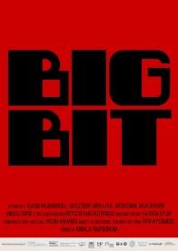 Big bit