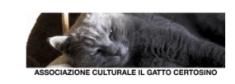 Il Gatto certosino Portofino Dubbing Glamour Festival - ActorsPoetryFestival