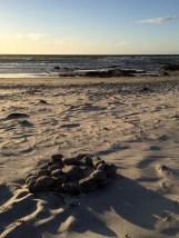 Fire circle at Asilomar beach