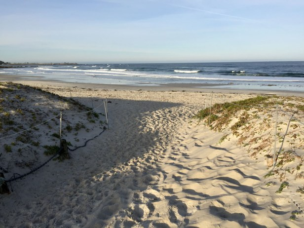 Walk to Asilomar beach