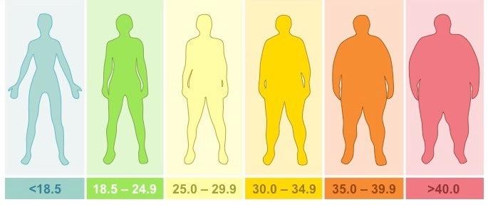 حساب كتلة الجسم حاسبة طبية سريعة ودقيقة بدون تعقيدات طــب وحــيـاة