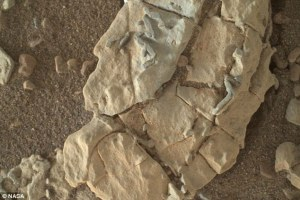 There could be alien life on Mars, an astrobiologist may have prove its existence too!