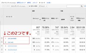 google_analyticsnotset2