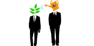 Mentorship Techish