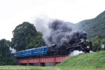 Travel to scenic Japan: Be relaxed with steam locomotive train Yamaguchi
