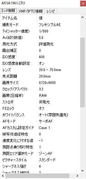 EOS R 動体追尾AFテスト