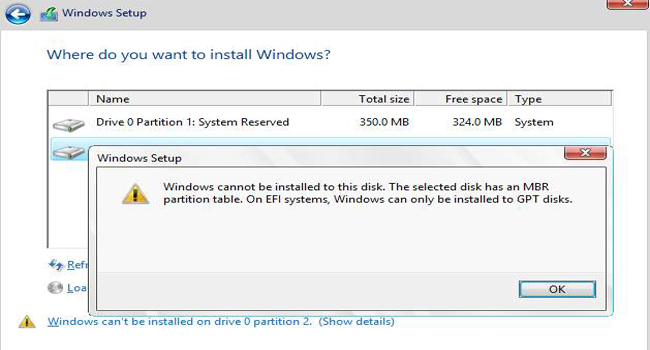 cannot be installed to this disk