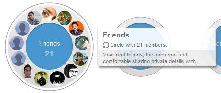 google+ choose circle