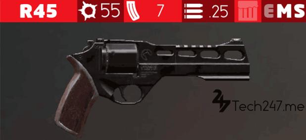 سلاح R45 في لعبة ببجي - لعبة PUBG