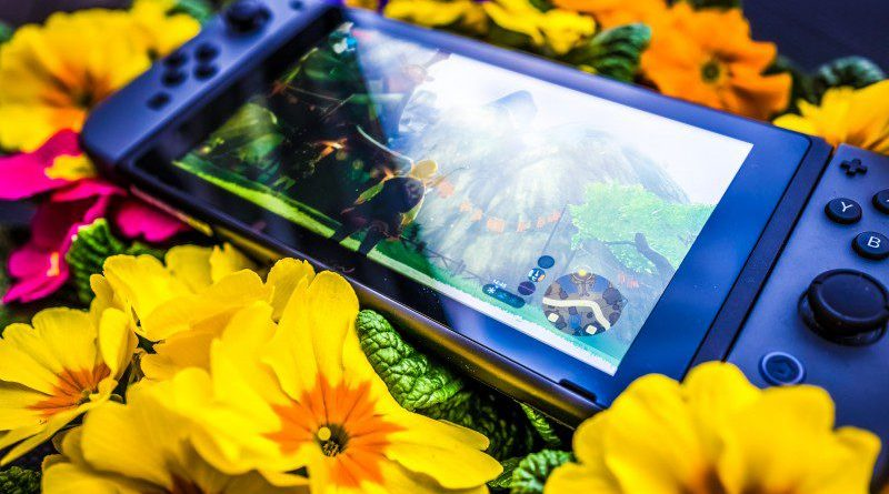 Legend of Zelda Breath of the Wild Nintendo Switch Video Games Top 10 Charts Ranking PC PS4 Xbox One Flowers