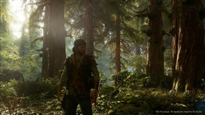 days-gone-screen-ps4-release-preview-info-trailer-screenshots-pro-4k-zombie-survival-game-forest-scenery