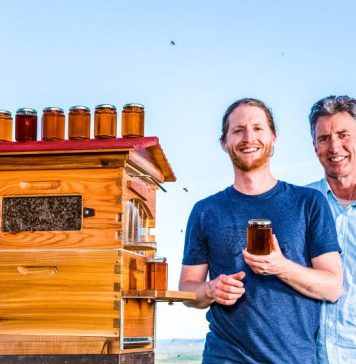 Cedar and Stu Anderson with a western red cedar Flow Hive in the backyard of the Bee Inventive office near Byron Bay Australia BeeInventive