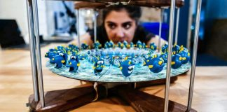 Fish_close_focus_Ana_bokeh_edited-4mation-zoetrope-3d-video