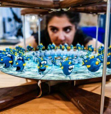 Fish_close_focus_Ana_bokeh_edited-4mation-zoetrope-3d-video