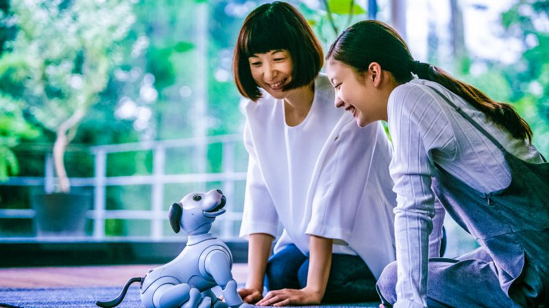 "sony aibo the world s first entertainment robot The name aibo is a play on the phrase ""artificial intelligence robot"" — it's also the japanese word for a pal — and proving its prowess in ai is more important to sony now than it has ."