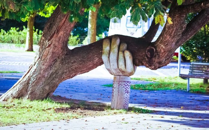 Helping Hand Wooden Statue Supports Tree Branch 5G