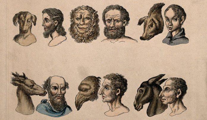 Human_physiognomies_next_to_animal_physiognomies
