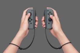 Joy-Con Controllers with Straps