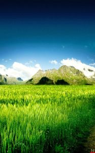 green-field-mountain-beatiful-samsung-galaxy-note-wallpapers