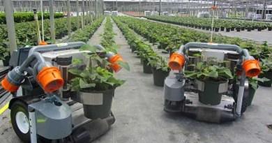 robots in nursery planting