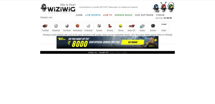 Wiziwig1
