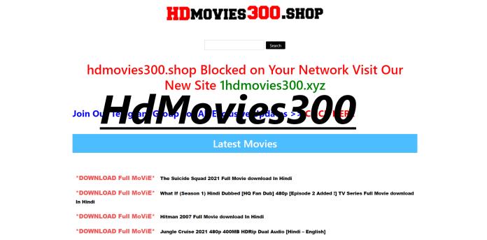 HdMovies300