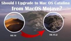 Should I Upgrade to Mac OS Catalina from MacOS Mojave