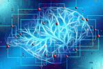 Researchers Discover Brain Mapping Method That Illuminates Targets For Treating Parkinson's Disease And Depression