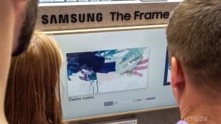 Samsung The Frame live 14