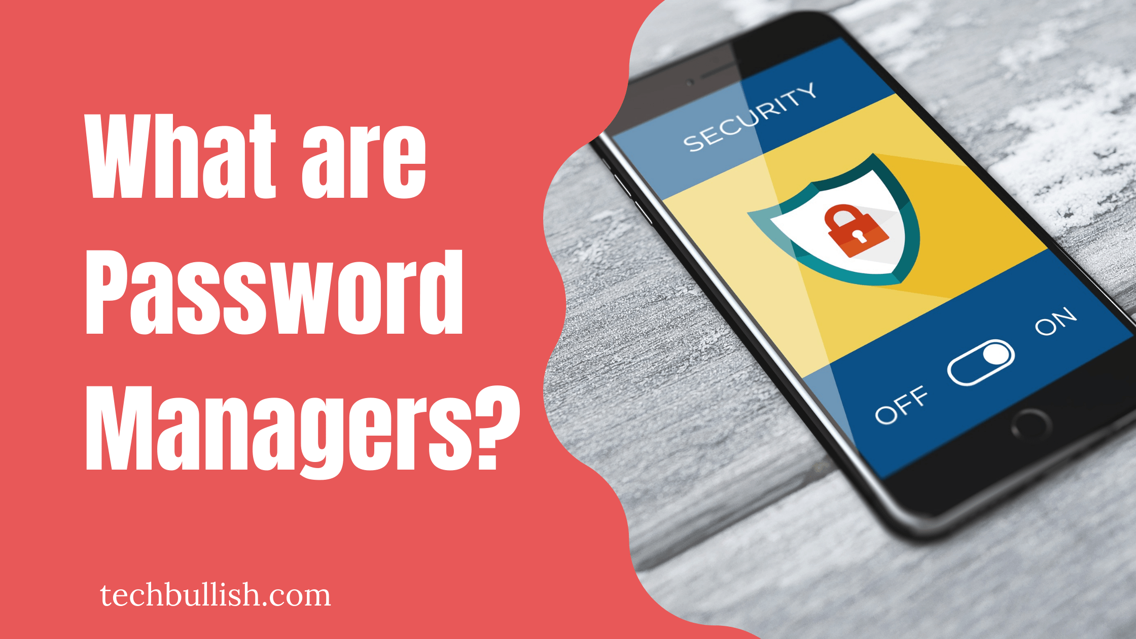 what is a password manager