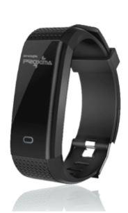 PS181 Wristband