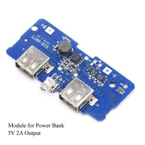 Power bank module
