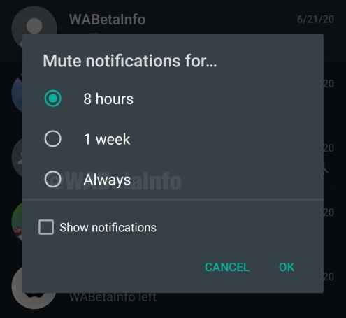 Mute Notifications for Always in WhatsApp Beta