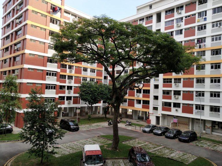 Vivo X21 - Day photos