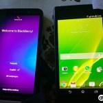 Το BlackBerry Z30 Ποζάρει Μαζί Το Xperia Z1