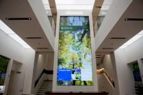 Microsoft 5th Avenue Store 5