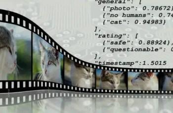 video metadata editor