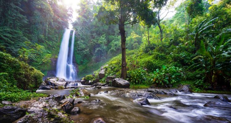 Jungle Ventures hits $175M first close on its third fund ...