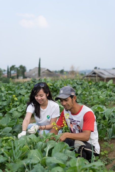 YC-backed Eden Farm wants to cut out the middlemen between farmers and restaurants in Indonesia