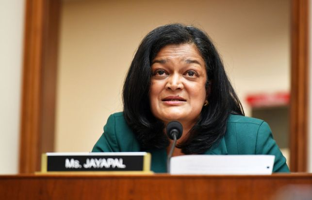 WASHINGTON, DC - JULY 29: Rep. Pramila Jayapal, D-WA, speaks during the House Judiciary Subcommittee hearing on Antitrust, Commercial and Administrative Law on Online Platforms and Market Power in the Rayburn House office Building, July 29, 2020 on Capitol Hill in Washington, DC.