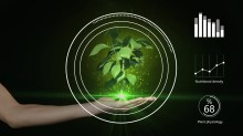 Gardin plant growing from hand VFX001 Moment