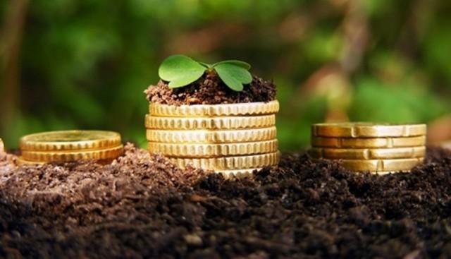 За счет спецрежима налогообложения агросектор ежегодно получает до 18 млрд грн