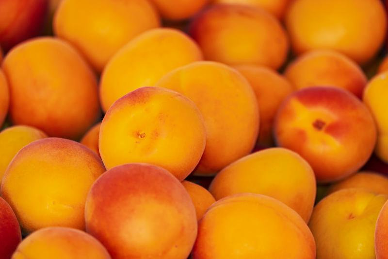В Україні загострюється конкуренція між українськими виробниками та імпортерами абрикосів