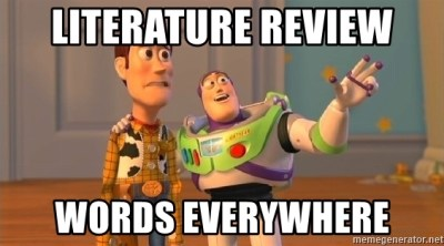 literature-review-words-everywhere (1)