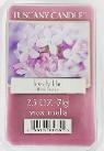 2.5 Oz 6PK Fragrance Melts – Tuscany Candle Lovely Lilac
