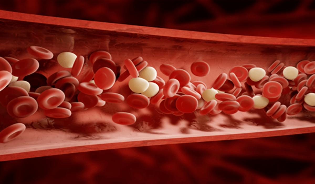 Artificial Blood Is Here-Telugu WorldWonders