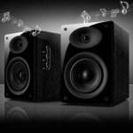 HiVi speakers – D1010MKII 08 Version 2.0 Multimedia