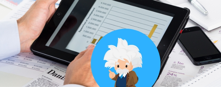 Primer on Einstein - Techforce Services
